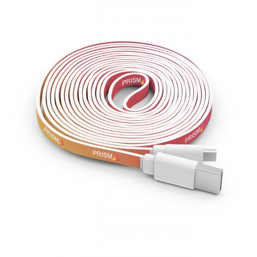 10 Foot Branded Cable - large 1